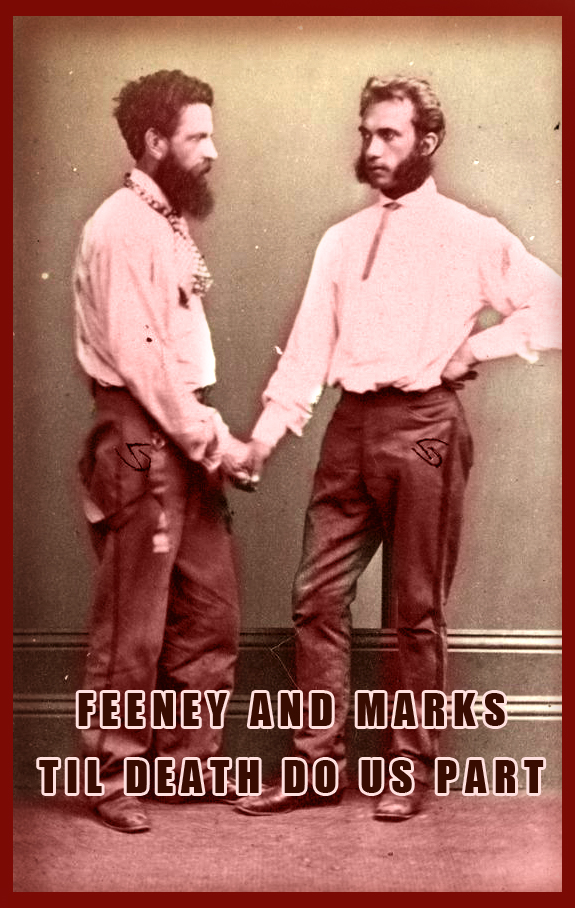 marks feeney 2